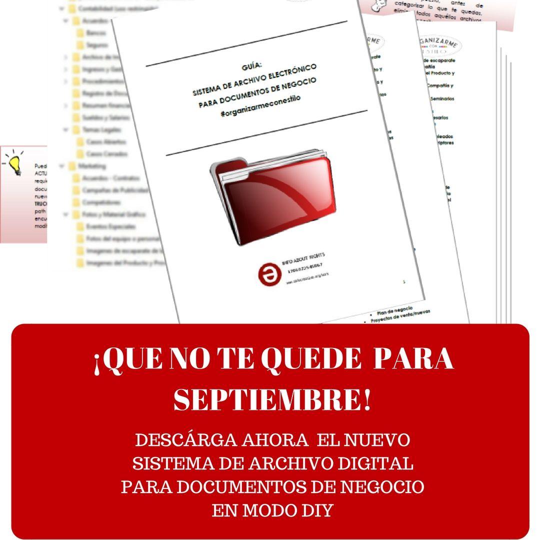 Sistema de Organización de Archivos Digitales de Negocio Diy