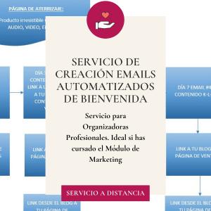 servicio para organizadora profesional creacion newsletter